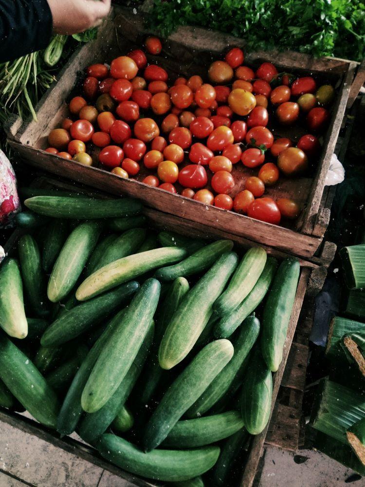 fresh produce at saint augustine farmers market